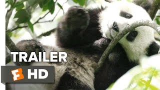 Video clip Born in China Official &#39Earth Day&#39 Trailer (2017) - Disneynature Documentary HD