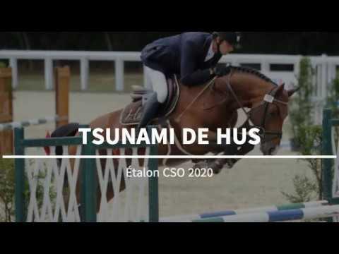 change_video_youtube2('6xZ4WLvwS3I','Pre?sentation TSUNAMI DE HUS');