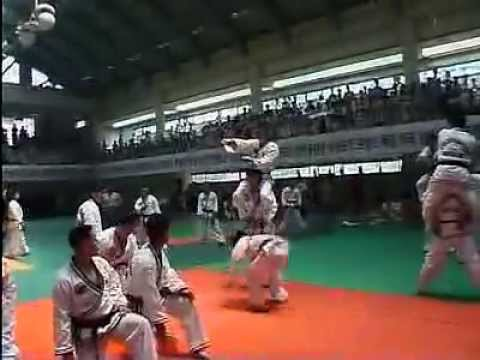 Hapkido Tournament DVD Preview Image 1