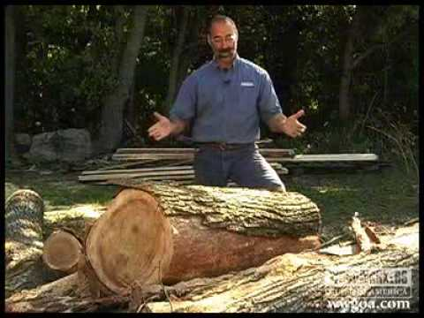 Woodworking DIY Tips: Cutting Lumber from Logs