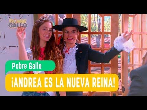 Pobre Gallo - Andrea y Borja Capítulo 69