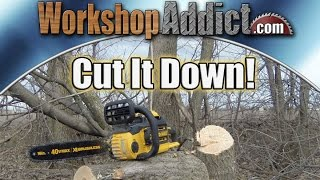 "Dewalt 40V XR Brushless 16"" Chainsaw DCCS690 Review"