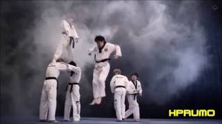Martial Arts Mix 2 of 2 in HD (Muay Thai, Takewondo, Sambo, Karate & Kyokushin, Kickboxing, etc.)