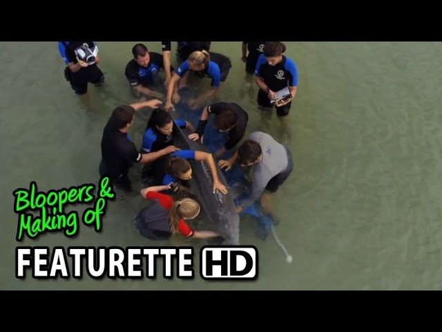 Dolphin Tale 2 (2014) Featurette - The Mission