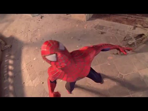 Spider-man Tribute - Hall of Fame