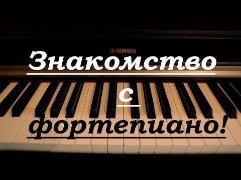 Знакомство с фортепиано. Уроки для чайников