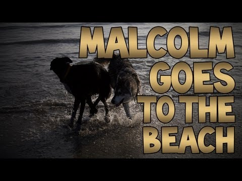 Malcolm Goes To The Beach!