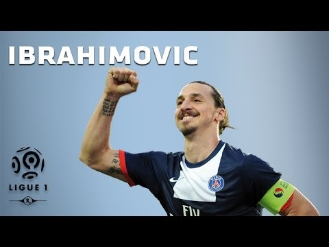 Zlatan Ibrahimovic - All 26 Goals - 2013-2014