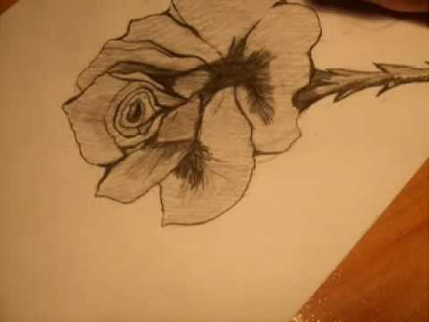 aprender dibujar lapiz. podrás aprender a dibujar