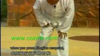 Wu Style Tai Chi : 8 methods for Treating Diabetes DW160-01c