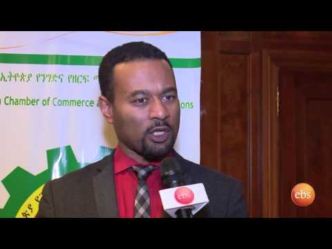 What's New : Ethiopian & US Business To Business Networking Event