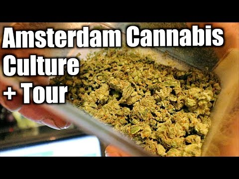Best Coffeeshops Tour | The Amsterdam Vlog Season 2 Day 2/5