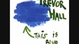 download lagu Trevor Hall - Om Shakti Om - With gratis
