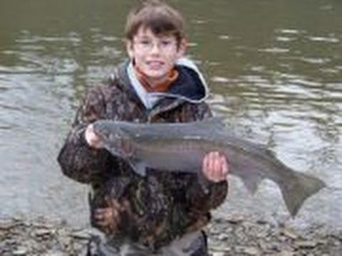 Steelhead Fishing With Kids on Elk Creek in PA