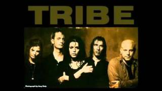 Watch Tribe Joyride i Saw The Film video