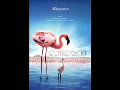 The Cinematic Orchestra - Soda