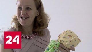 Без оглядки на возраст: жительница Владивостока родила тройню в 51 год - Россия 24