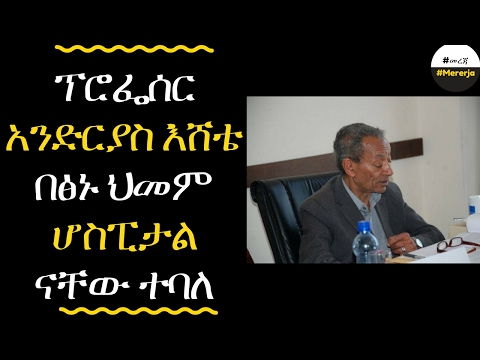 Ethiopia: Professor Endrias Eshete is critically ill
