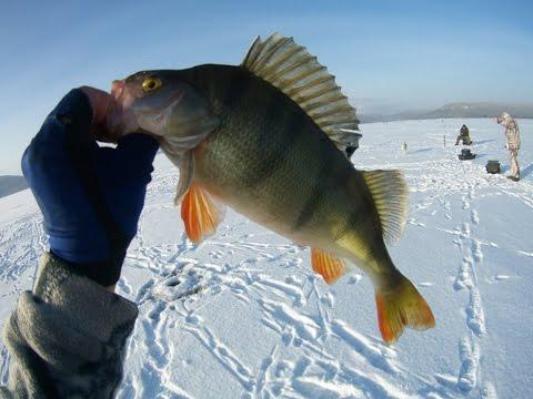 как рыбалка на ильмене 2016г