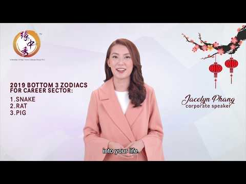 2019 Top 3 Zodiac Signs (Career) by Jacelyn Phang