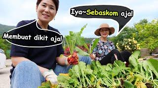 download lagu Segarrrr!! Resep Kimchi kuahnya banjir ala Master chef dari kampung Korea!😋 mp3