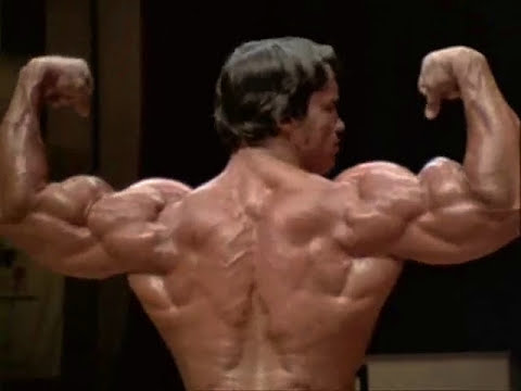 The best moments of Arnold Schwarzenegger