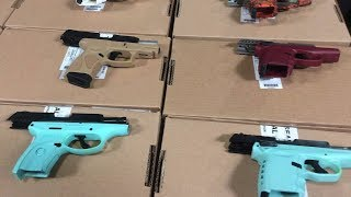 Toronto police show off dozens of guns confiscated in raid