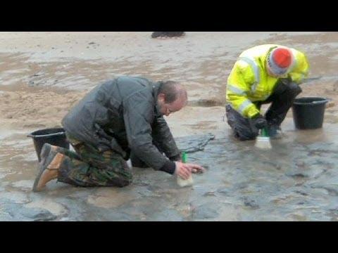 Älteste Fußabdrücke Europas entdeckt