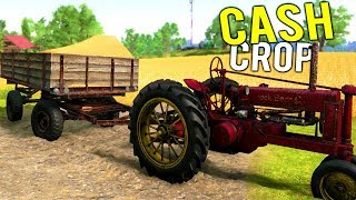 OUR FIRST SUCCESSFUL CASH CROP SALE! Making Money Harvesting Crops - Farmer