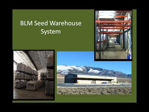 Procurement and application of native plant material in the BLM