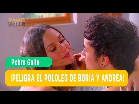 Pobre Gallo - Andrea y Borja Capítulo 82