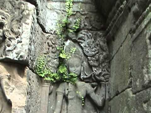 Angkor Wat and Ara