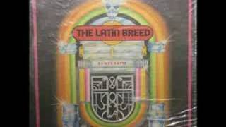 Latin Breed - Hay Que Saber Perder