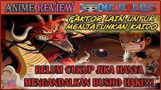 Luffy vs Kaido!! Tak Cukup Hanya Mengandalkan Bushosoku Haki (One Piece)