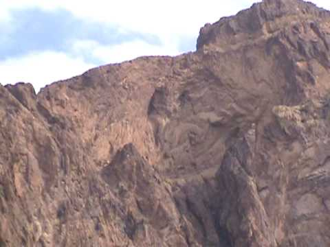 palm canyon, kofa wildlife refuge, rock climbing paradise, camping permitted