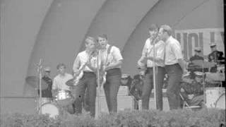 Watch Beach Boys The Warmth Of The Sun video