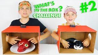 WHAT'S IN THE BOX CHALLENGE #2 ! - C'est quoi dans la boite ? - Néo VS Swan