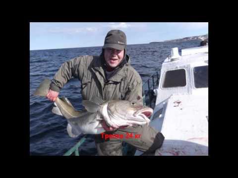 рыбалка на баренцевом град  рыбачий