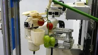 パナソニック トマト収穫ロボット 2017国際ロボット展