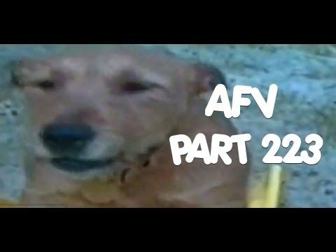Home Videos - Part 223