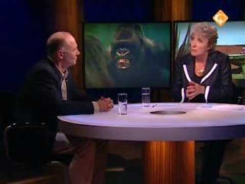 Gorilla Bokito Dutch News Nova 19-5-2007