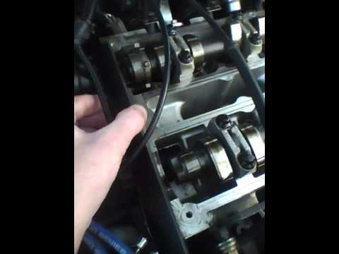 ford focus svt timing belt