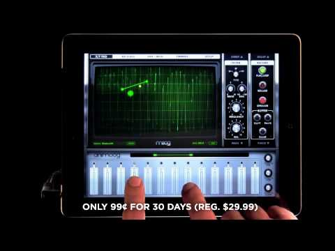 Animoog: the 1st Pro Synth for iPad
