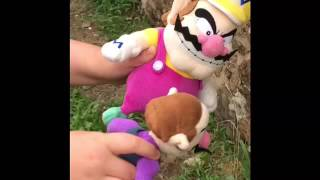 CS short Wario and Waluigi's money scam