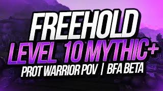 LEVEL 10 FREEHOLD | BFA Beta | Prot Warrior POV | Method Sco