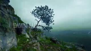 ALUNAH - Awakening The Forest (Lyric Video)