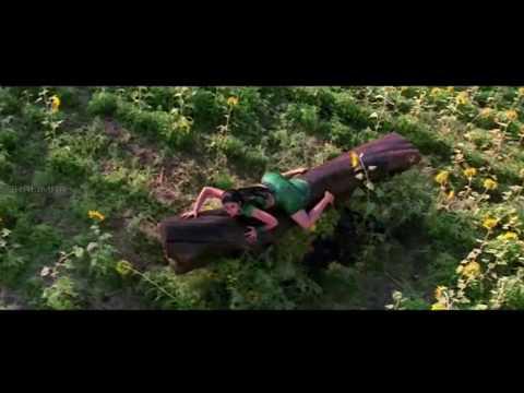 Poola Ghuma Ghuma Video Song || Sri Anjaneyam Movie || Nitin, Charmi video