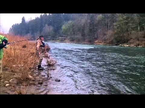 AAA TV Feb 9th Steelhead fishing and tips