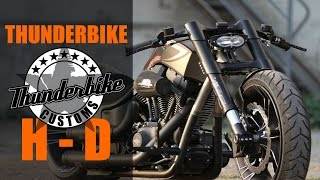 "Harley Davidson Screamin Eagle ""Life Fitness"" by Thunderbike 