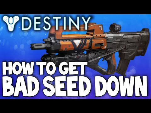 Destiny: How To Get Bad Seed Down - Legendary Pulse Rifle / Best Setup & Review W/ PvP Gameplay!